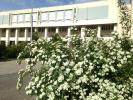 http://www.volsu.ru/upload/iblock/3bc/10.jpg